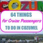 64 Things for Cruise Passengers to Do in Cozumel