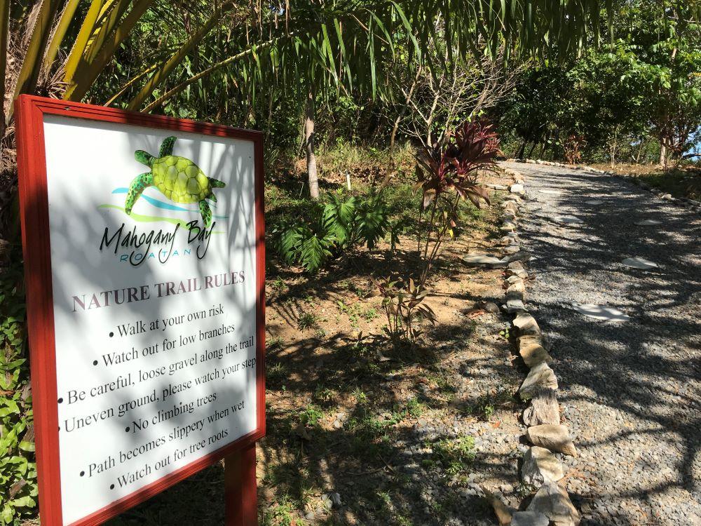 Nature trail in Roatan