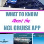 11 Things to Know about the Cruise Norwegian App